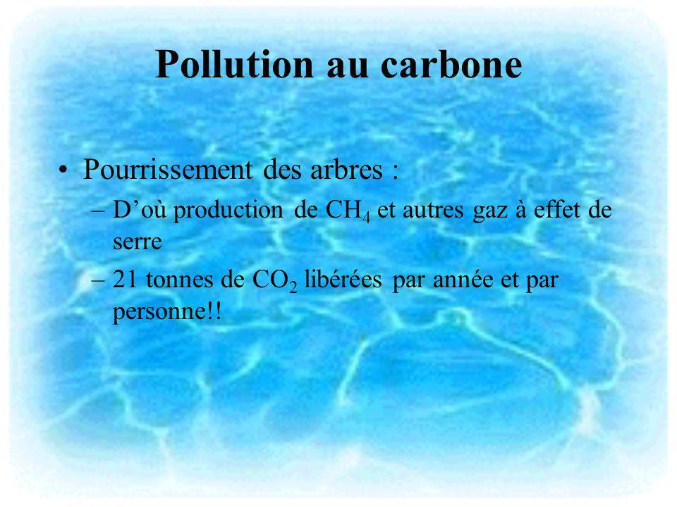 Pollution au carbone Pourrissement des arbres : –Doù production de CH 4 et autres gaz à effet de serre –21 tonnes de CO 2 libérées par année et par pe