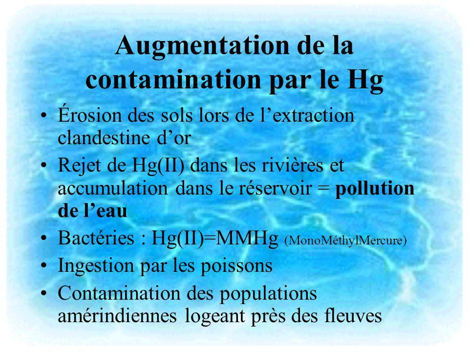 Augmentation de la contamination par le Hg Érosion des sols lors de lextraction clandestine dor Rejet de Hg(II) dans les rivières et accumulation dans