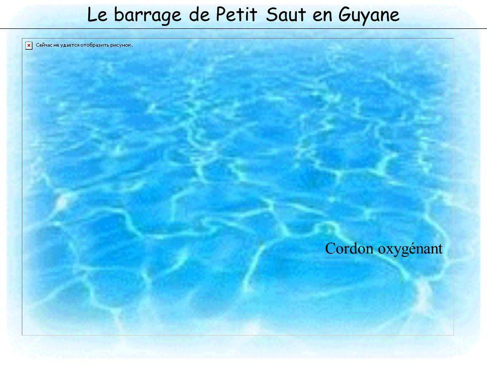 Le barrage de Petit Saut en Guyane Cordon oxygénant