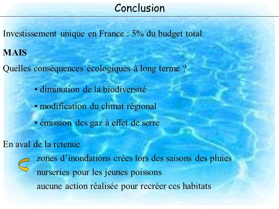 Conclusion MAIS Quelles conséquences écologiques à long terme ? diminution de la biodiversité modification du climat régional émission des gaz à effet