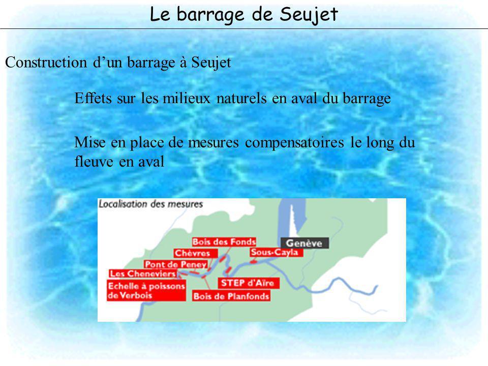 Le barrage de Seujet Construction dun barrage à Seujet Effets sur les milieux naturels en aval du barrage Mise en place de mesures compensatoires le l