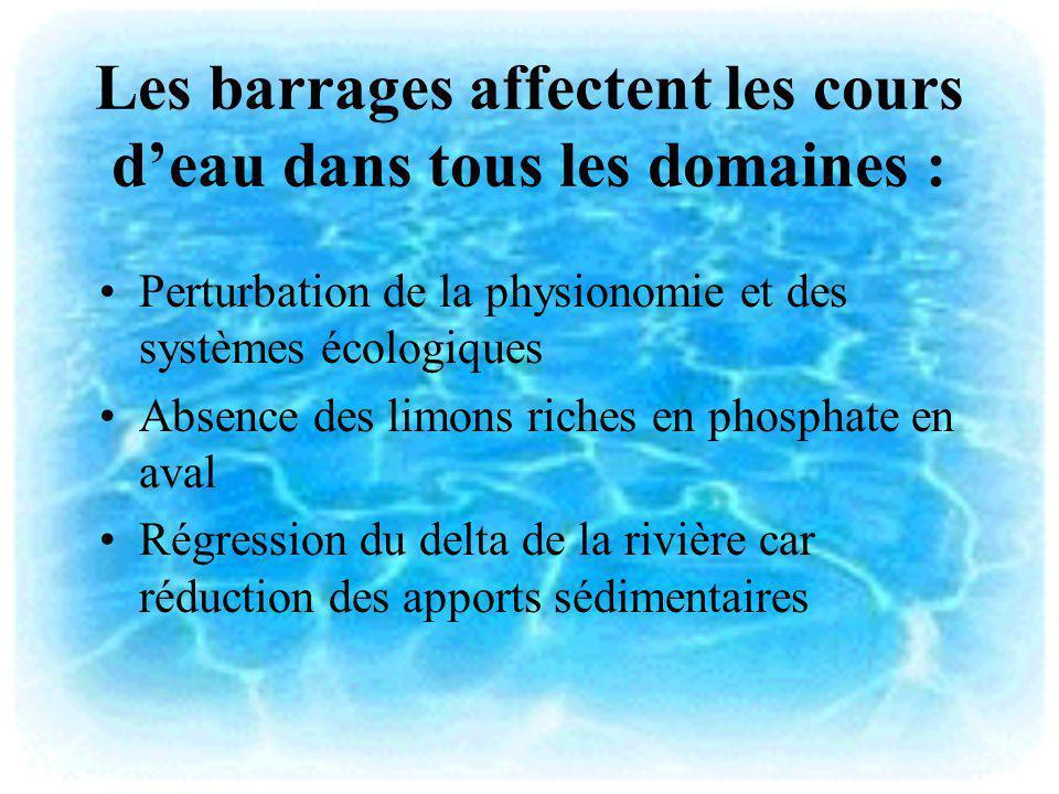 Les barrages affectent les cours deau dans tous les domaines : Perturbation de la physionomie et des systèmes écologiques Absence des limons riches en