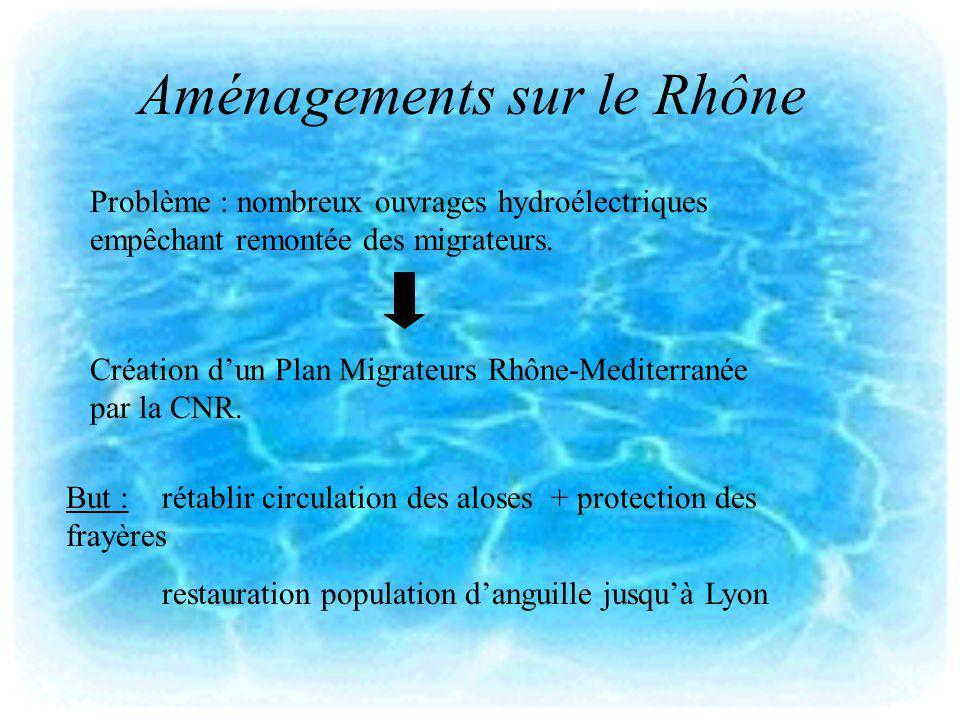 Aménagements sur le Rhône Problème : nombreux ouvrages hydroélectriques empêchant remontée des migrateurs. Création dun Plan Migrateurs Rhône-Mediterr