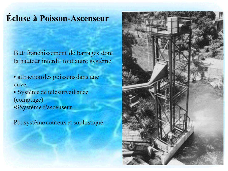 Écluse à Poisson-Ascenseur But: franchissement de barrages dont la hauteur interdit tout autre système. attraction des poissons dans une cuve, Système