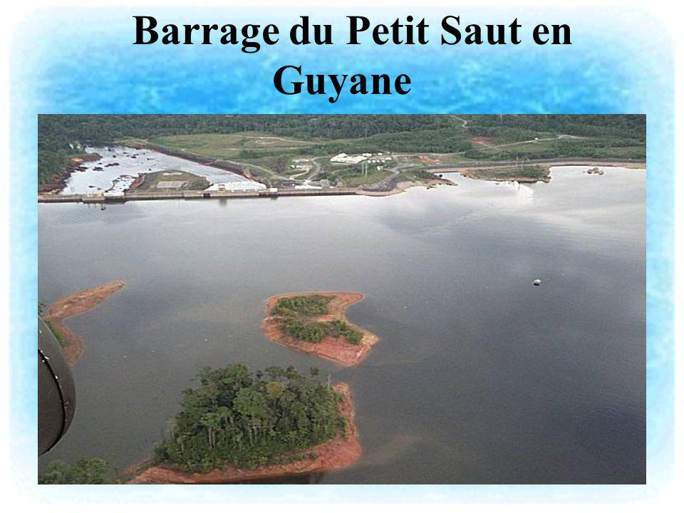 Le réservoir du barrage du Petit Saut