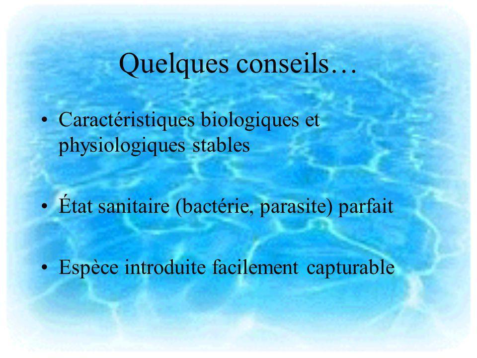 Quelques conseils… Caractéristiques biologiques et physiologiques stables État sanitaire (bactérie, parasite) parfait Espèce introduite facilement cap