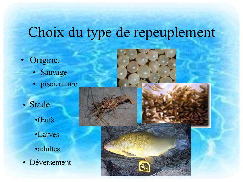 Choix du type de repeuplement Origine: Sauvage pisciculture Stade : Œufs Larves adultes Déversement