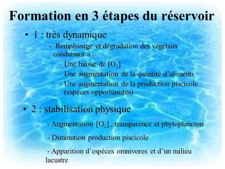 Formation en 3 étapes du réservoir 1 : très dynamique - Remplissage et dégradation des végétaux conduisant à : –Une baisse de [O 2 ] –Une augmentation