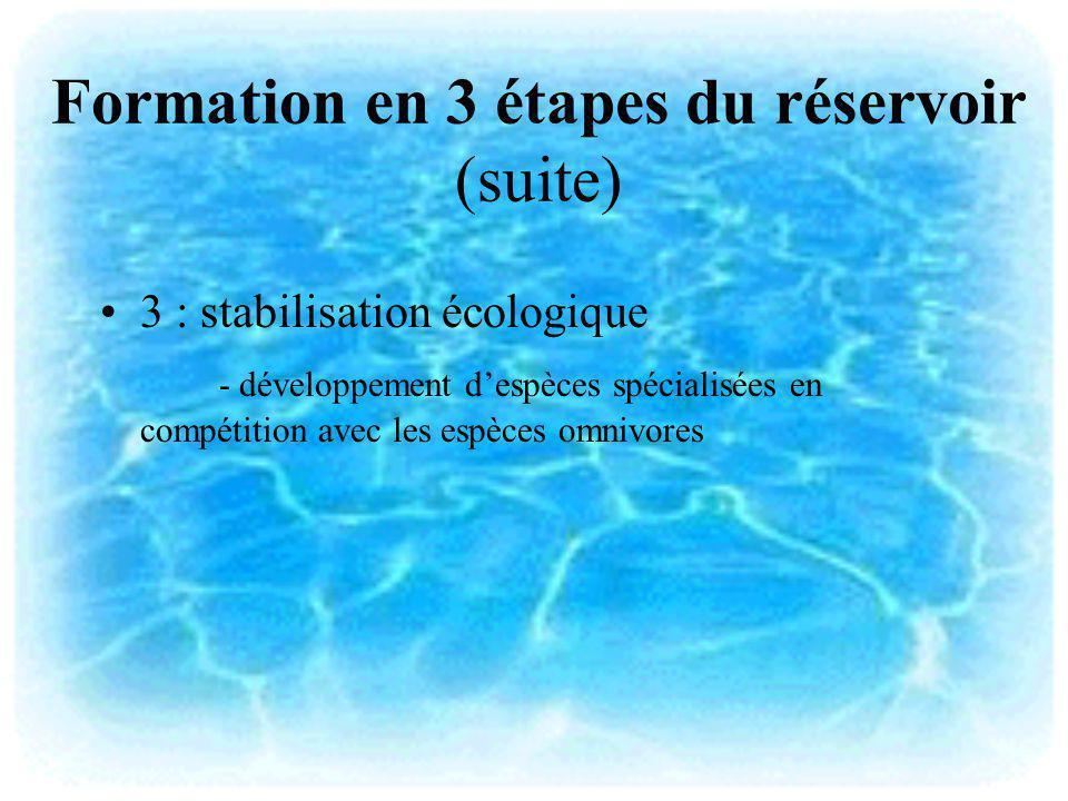 Formation en 3 étapes du réservoir (suite) 3 : stabilisation écologique - développement despèces spécialisées en compétition avec les espèces omnivore