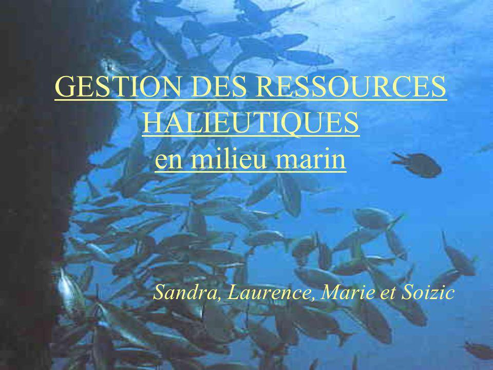 GESTION DES RESSOURCES HALIEUTIQUES en milieu marin Sandra, Laurence, Marie et Soizic