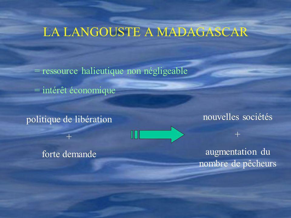LA LANGOUSTE A MADAGASCAR = ressource halieutique non négligeable = intérêt économique politique de libération + forte demande nouvelles sociétés + au