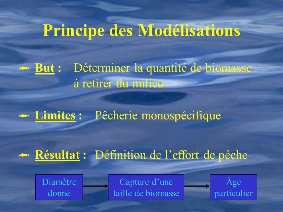 Principe des Modélisations Déterminer la quantité de biomasse à retirer du milieu Pêcherie monospécifique Définition de leffort de pêche Diamètre donn