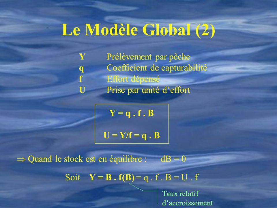 Le Modèle Global (2) YPrélèvement par pêche qCoefficient de capturabilité fEffort dépensé UPrise par unité deffort Y = q. f. B U = Y/f = q. B Quand le