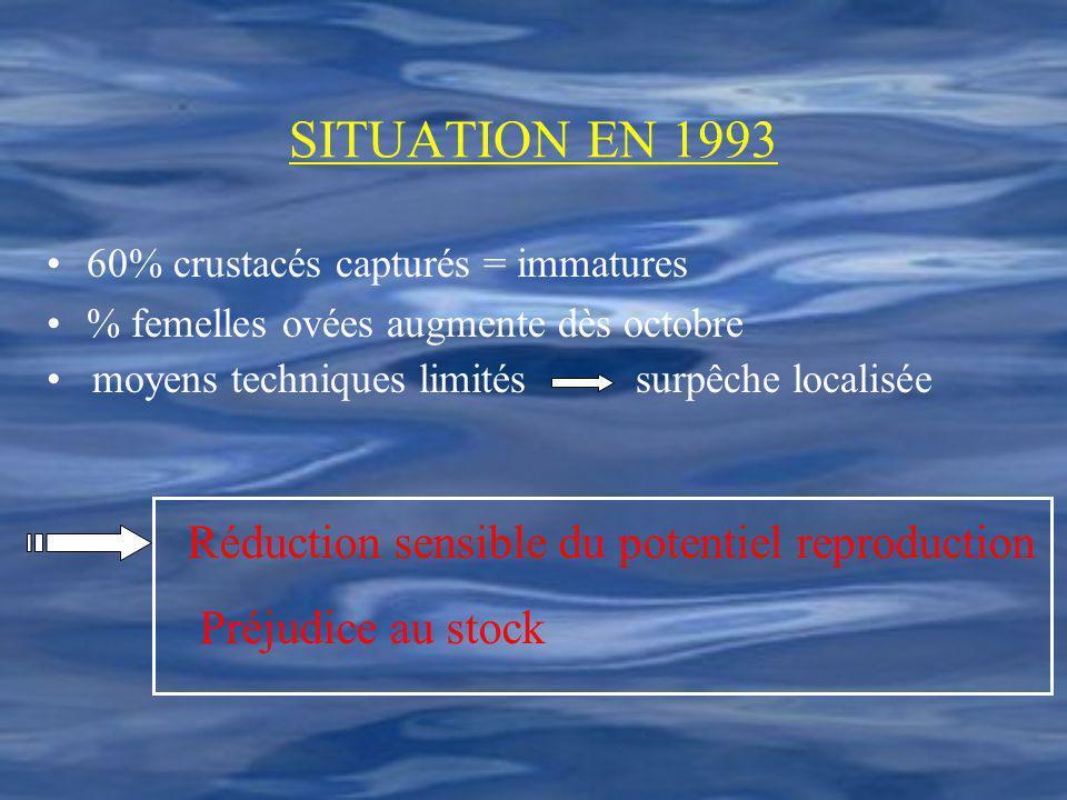 SITUATION EN 1993 60% crustacés capturés = immatures % femelles ovées augmente dès octobre Réduction sensible du potentiel reproduction Préjudice au s