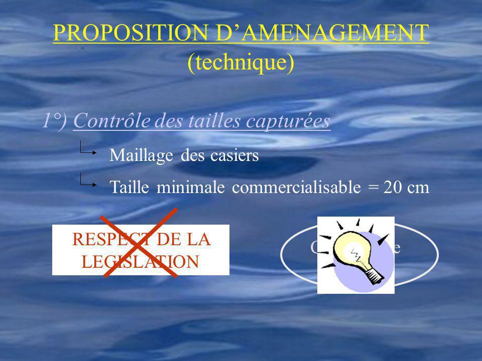 PROPOSITION DAMENAGEMENT (technique) 1°) Contrôle des tailles capturées Maillage des casiers Taille minimale commercialisable = 20 cm RESPECT DE LA LE