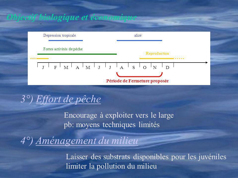 Objectif biologique et économique Fortes activités de pêche Reproduction Depression tropicalealizé Période de Fermeture proposée J F M A M J J A S O N