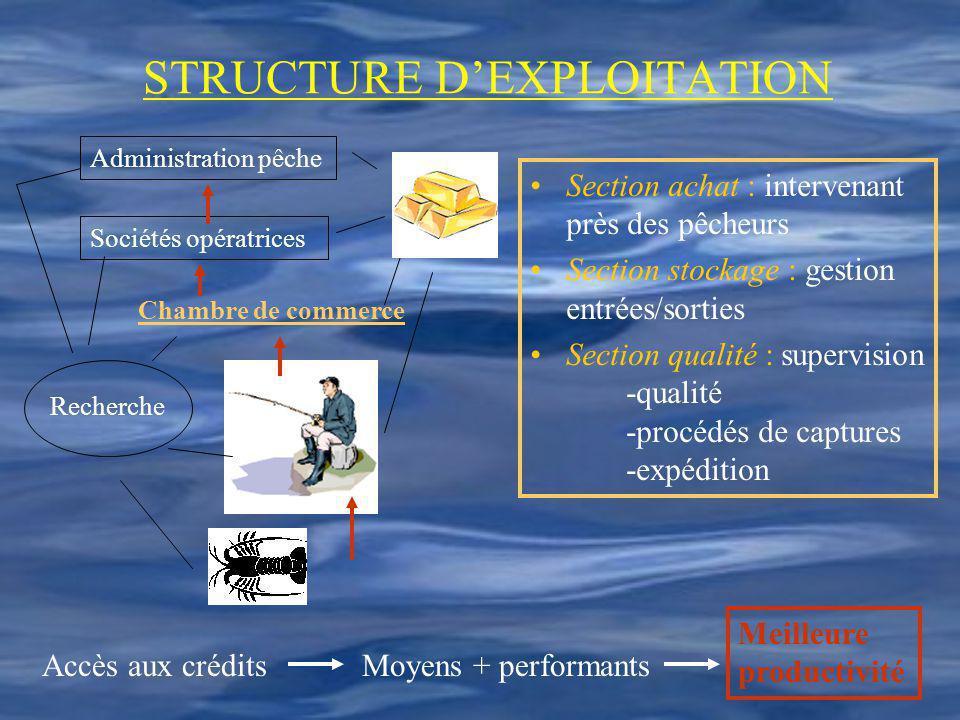 STRUCTURE DEXPLOITATION Moyens + performants Meilleure productivité Accès aux crédits Administration pêche Sociétés opératrices Chambre de commerce Re