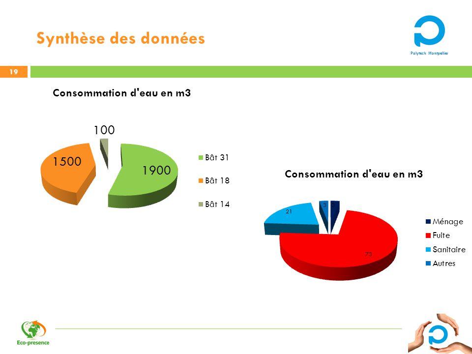 Polytech Montpellier Synthèse des données 19