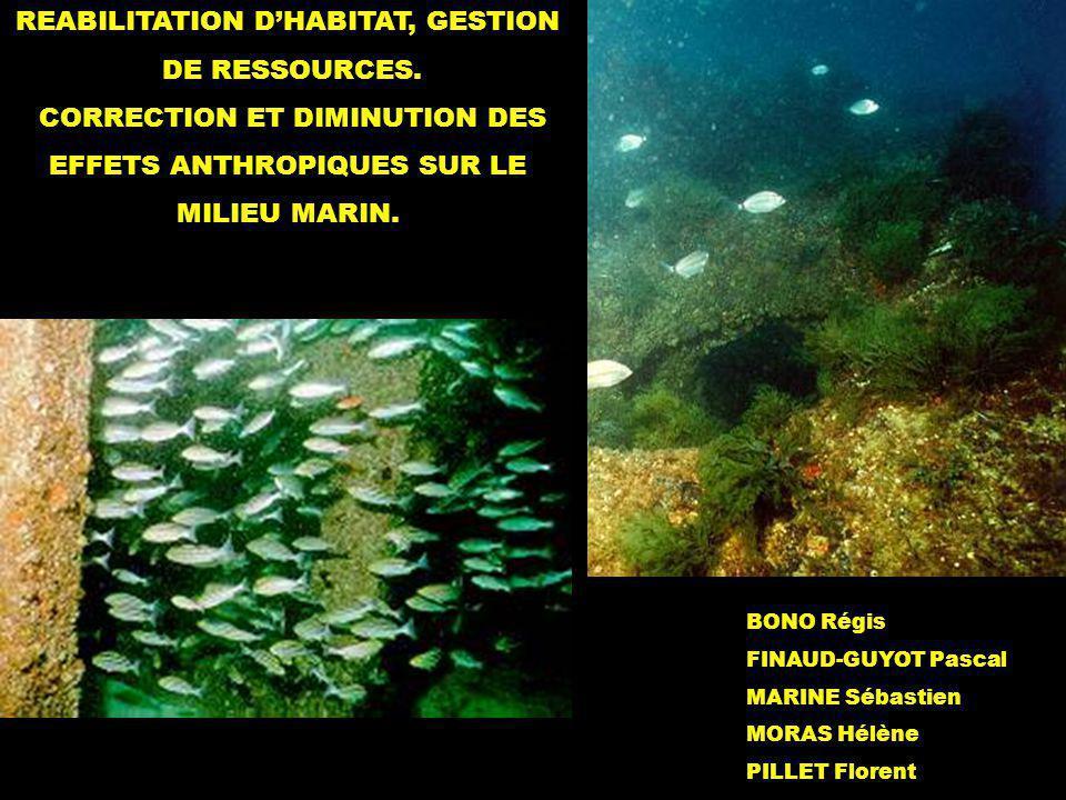 - Les récifs artificiels -La conchyliculture Lostréiculture - La pisciculture - Étude dun exemple