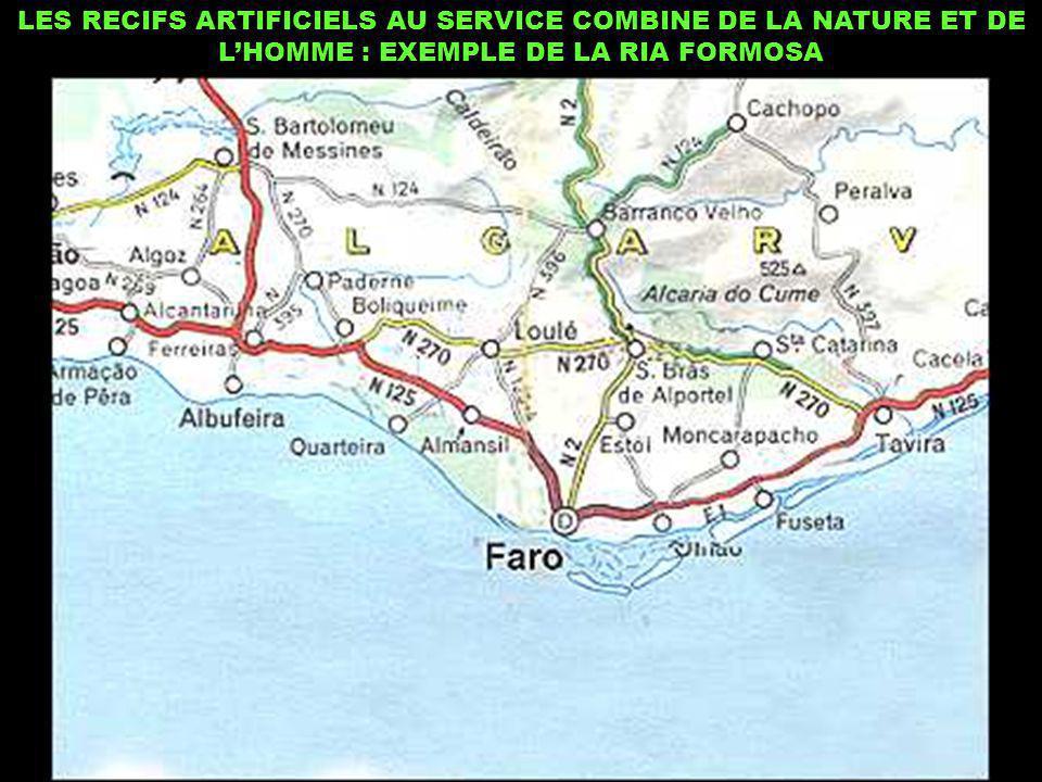 LES RECIFS ARTIFICIELS AU SERVICE COMBINE DE LA NATURE ET DE LHOMME : EXEMPLE DE LA RIA FORMOSA