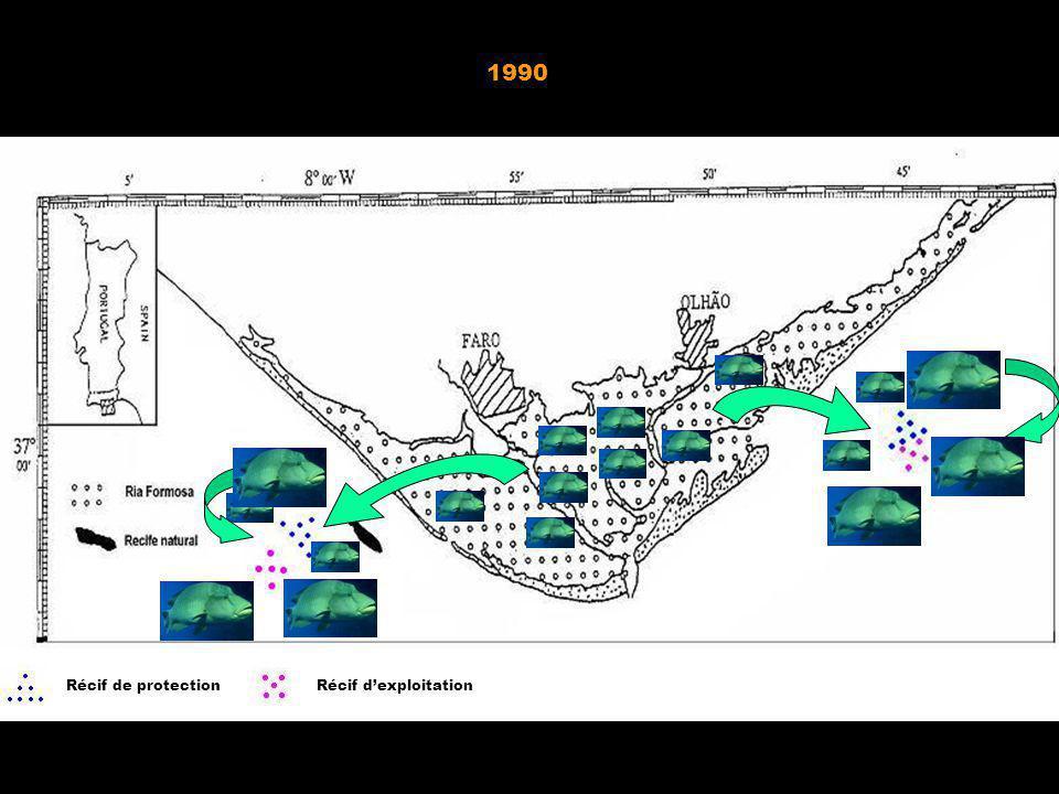 Avant 1990 Après 1990 Récif de protectionRécif dexploitation 1990