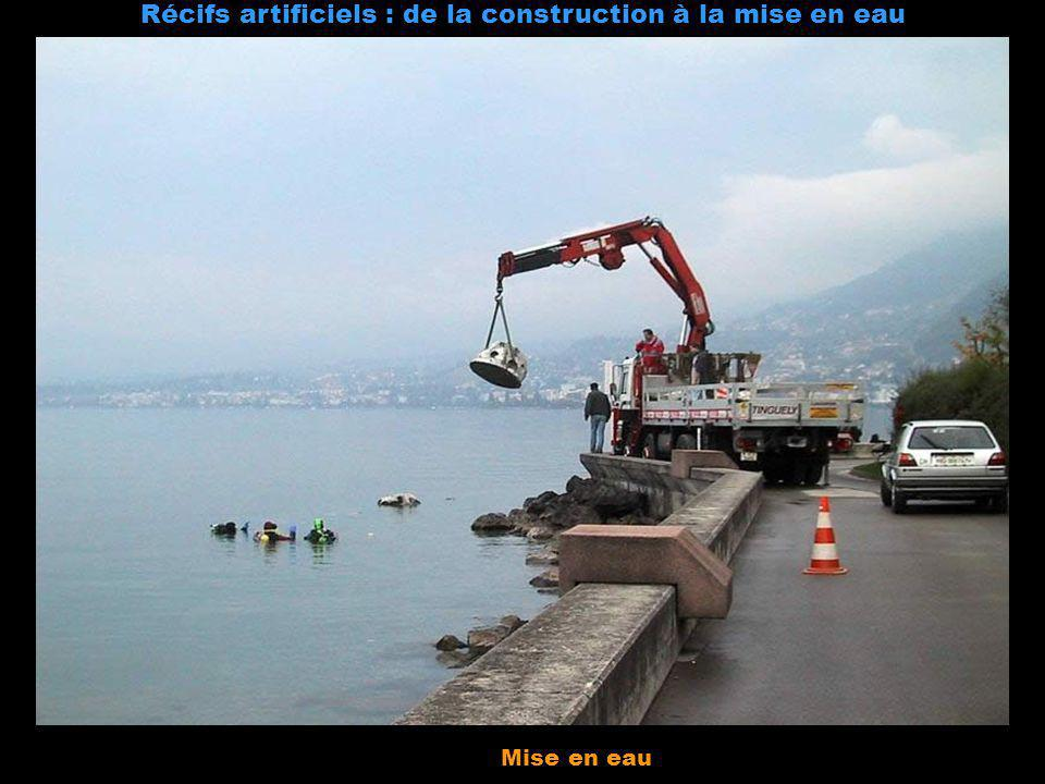 Récifs artificiels : de la construction à la mise en eau Coulée du béton dans le moule Séchage Démoulage Mise en eau