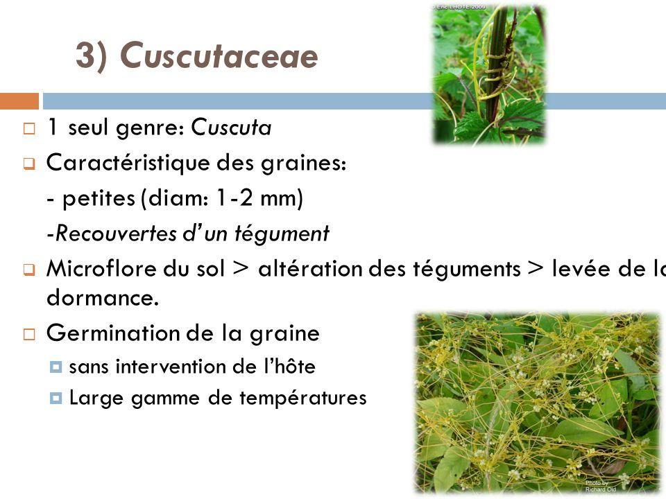 1 seul genre: Cuscuta Caractéristique des graines: - petites (diam: 1-2 mm) -Recouvertes dun tégument Microflore du sol > altération des téguments > l