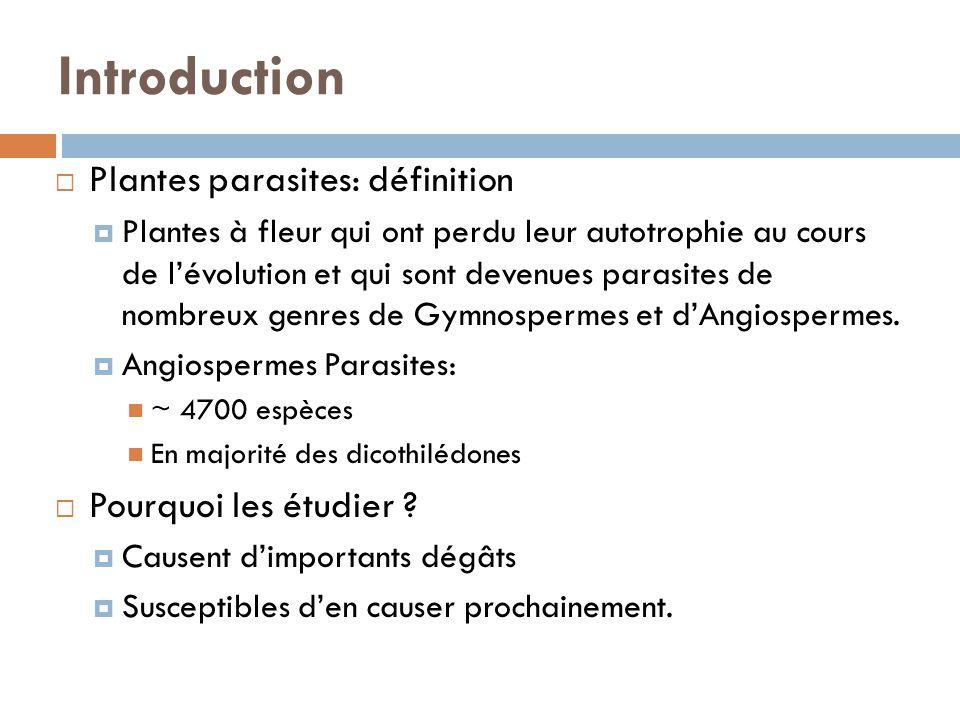 Introduction Plantes parasites: définition Plantes à fleur qui ont perdu leur autotrophie au cours de lévolution et qui sont devenues parasites de nom