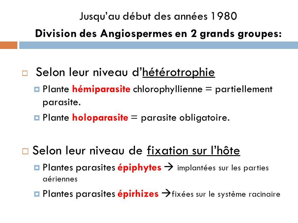 Jusquau début des années 1980 Division des Angiospermes en 2 grands groupes: Selon leur niveau dhétérotrophie Plante hémiparasite chlorophyllienne = p