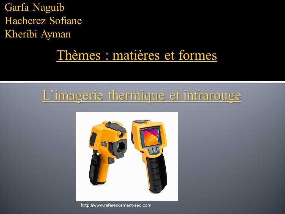 Garfa Naguib Hacherez Sofiane Kheribi Ayman Thèmes : matières et formes http://www.referencement-seo.com