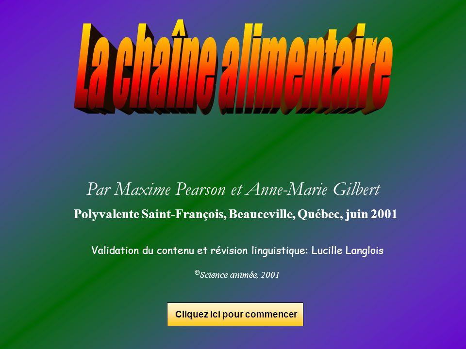 Par Maxime Pearson et Anne-Marie Gilbert Polyvalente Saint-François, Beauceville, Québec, juin 2001 Validation du contenu et révision linguistique: Lu