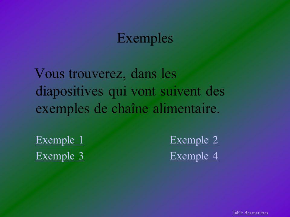 Exemples Vous trouverez, dans les diapositives qui vont suivent des exemples de chaîne alimentaire. Exemple 1Exemple 2 Exemple 3Exemple 4 Table des ma