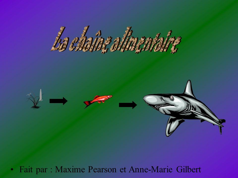 Fait par : Maxime Pearson et Anne-Marie Gilbert