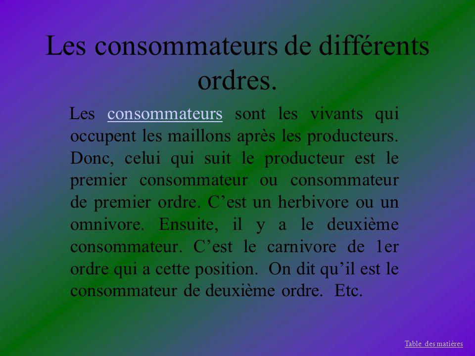Les consommateurs de différents ordres. Les consommateurs sont les vivants qui occupent les maillons après les producteurs. Donc, celui qui suit le pr