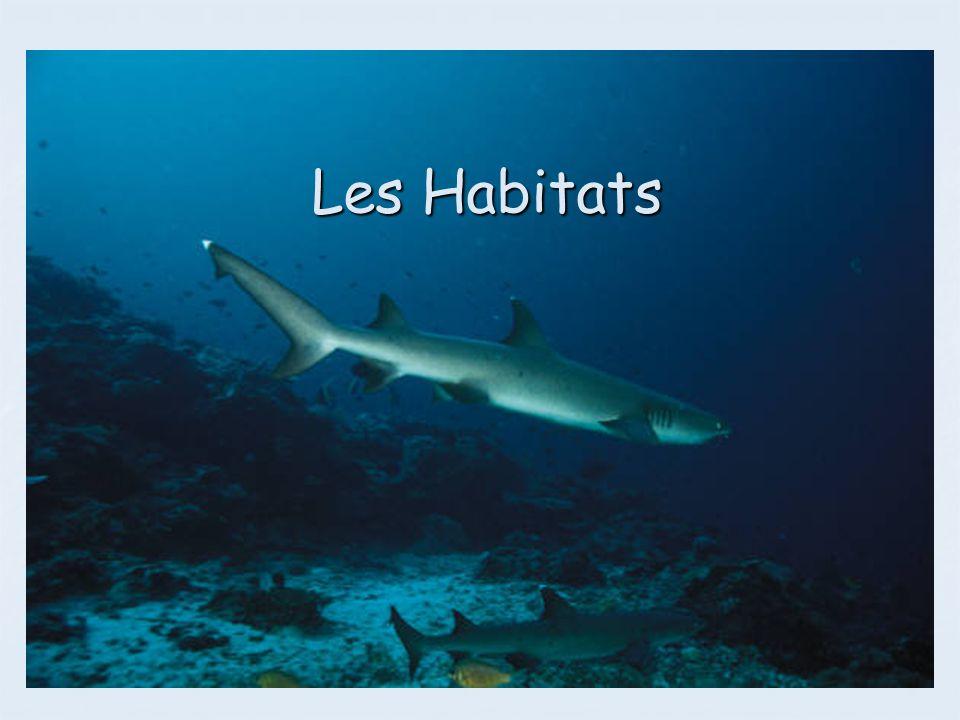 Quest-ce qu un habitat ?