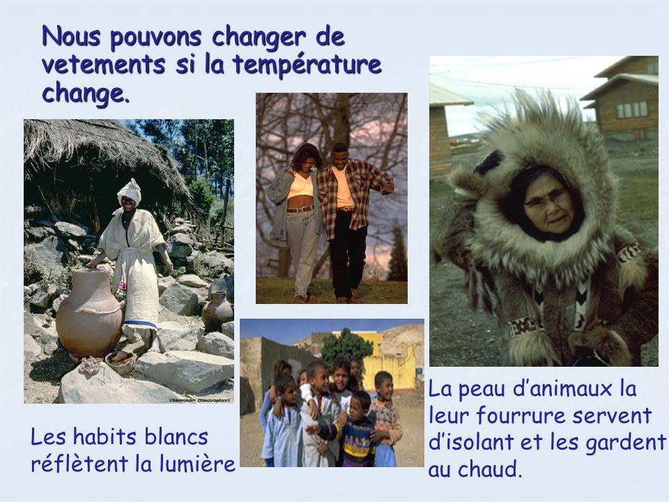 Les animaux et les plantes La plupart des plantes et des animaux sadaptent afin de survivre dans un habitat particulier.