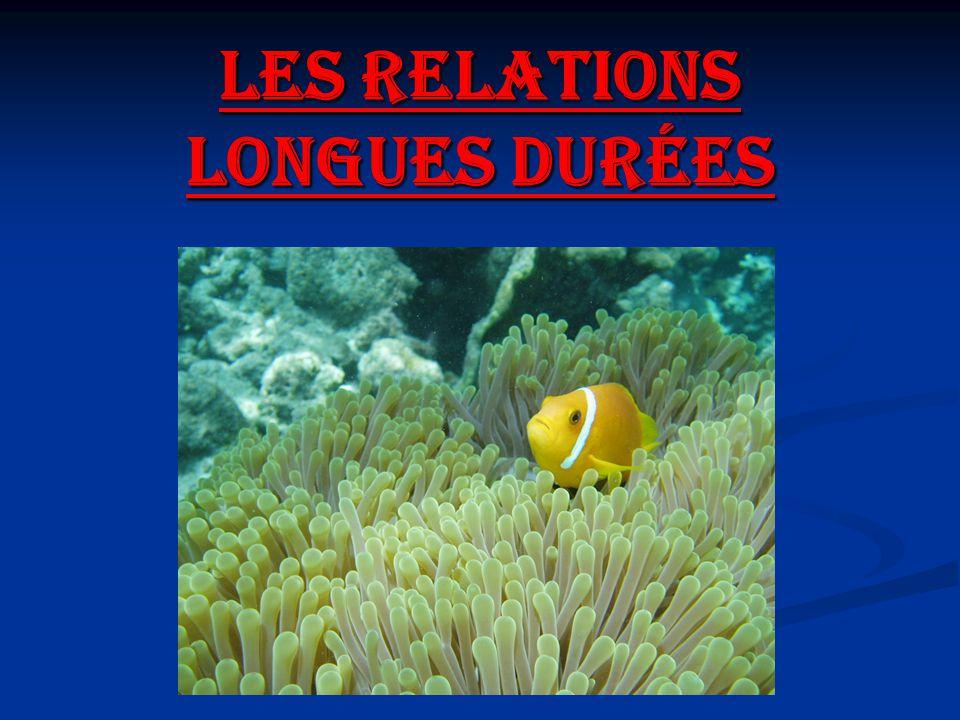 Plan Introduction: Quest-ce quune relation longue durée.