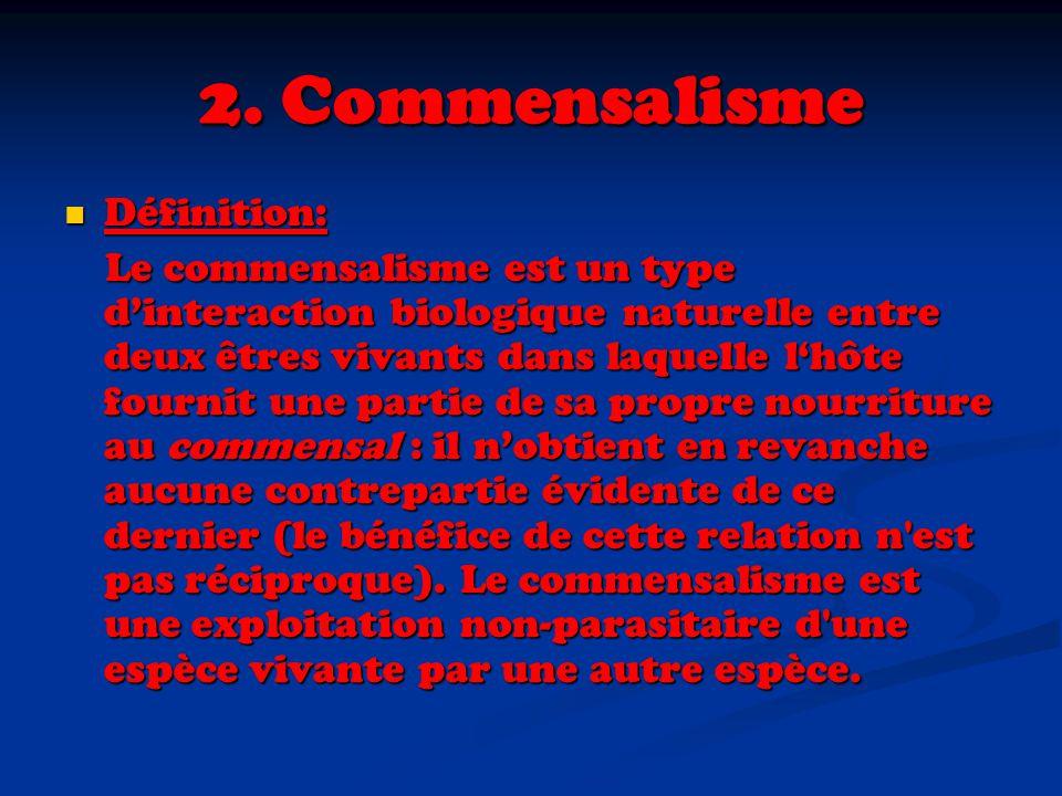2. Commensalisme Définition: Définition: Le commensalisme est un type dinteraction biologique naturelle entre deux êtres vivants dans laquelle lhôte f
