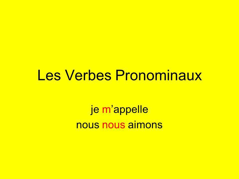 Les Verbes Pronominaux je mappelle nous nous aimons
