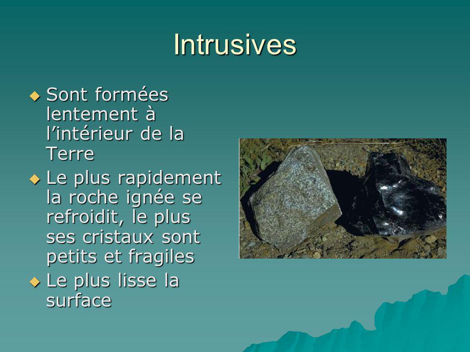 Intrusives Sont formées lentement à lintérieur de la Terre Sont formées lentement à lintérieur de la Terre Le plus rapidement la roche ignée se refroi