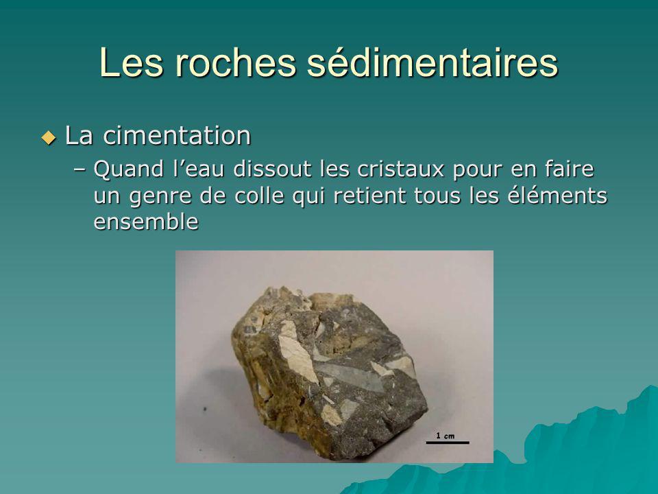Les roches sédimentaires La cimentation La cimentation –Quand leau dissout les cristaux pour en faire un genre de colle qui retient tous les éléments