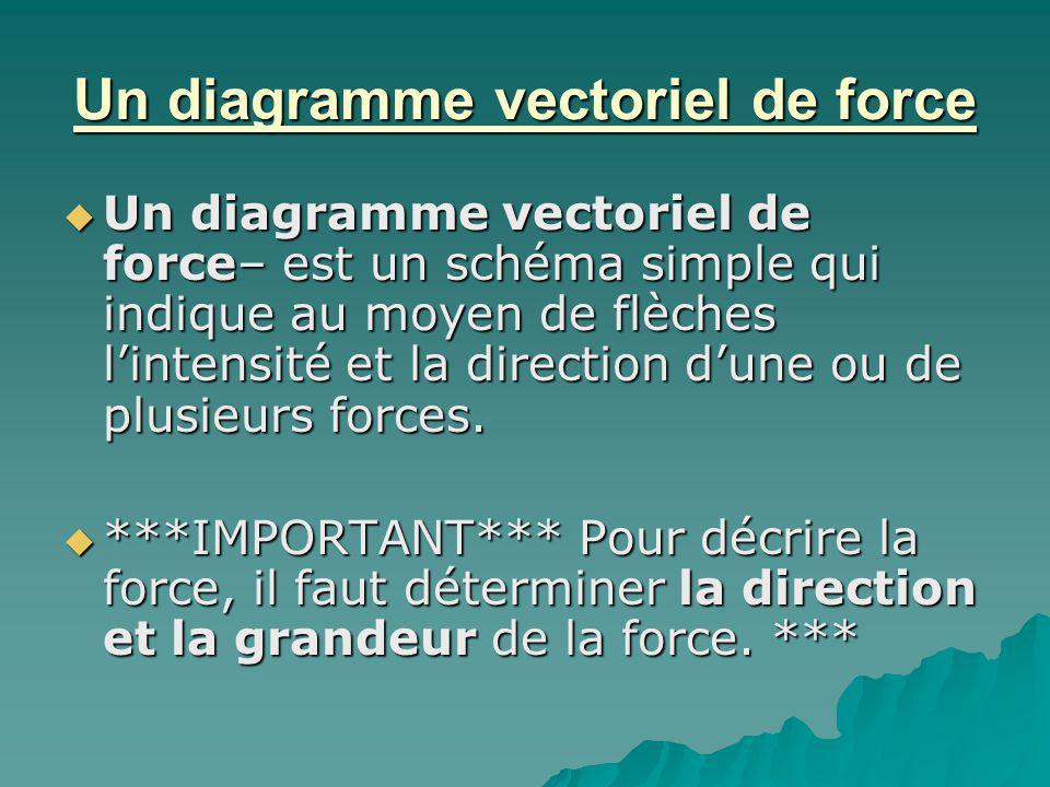 Un diagramme vectoriel de force Un diagramme vectoriel de force– est un schéma simple qui indique au moyen de flèches lintensité et la direction dune