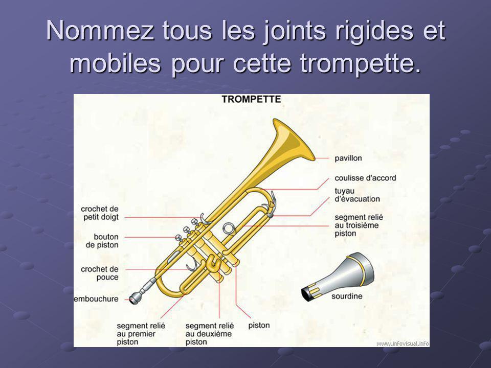 Nommez tous les joints rigides et mobiles pour cette trompette.