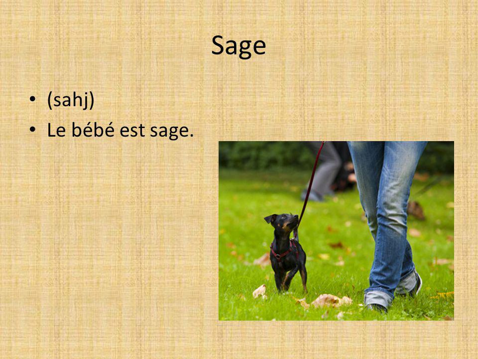 Sage (sahj) Le bébé est sage.