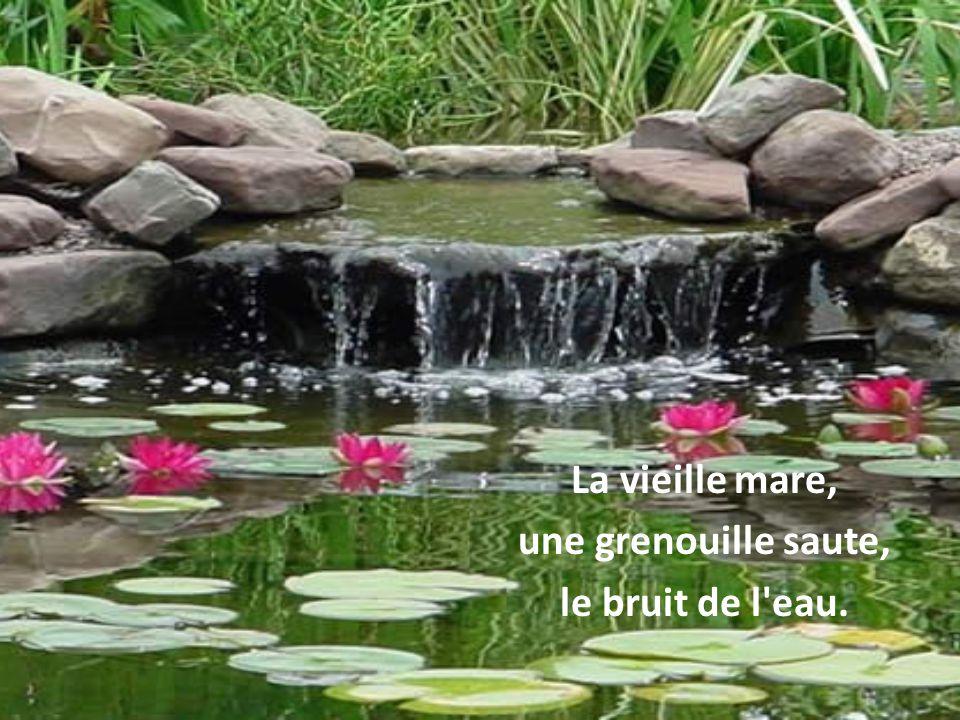 La vieille mare, une grenouille saute, le bruit de l eau.