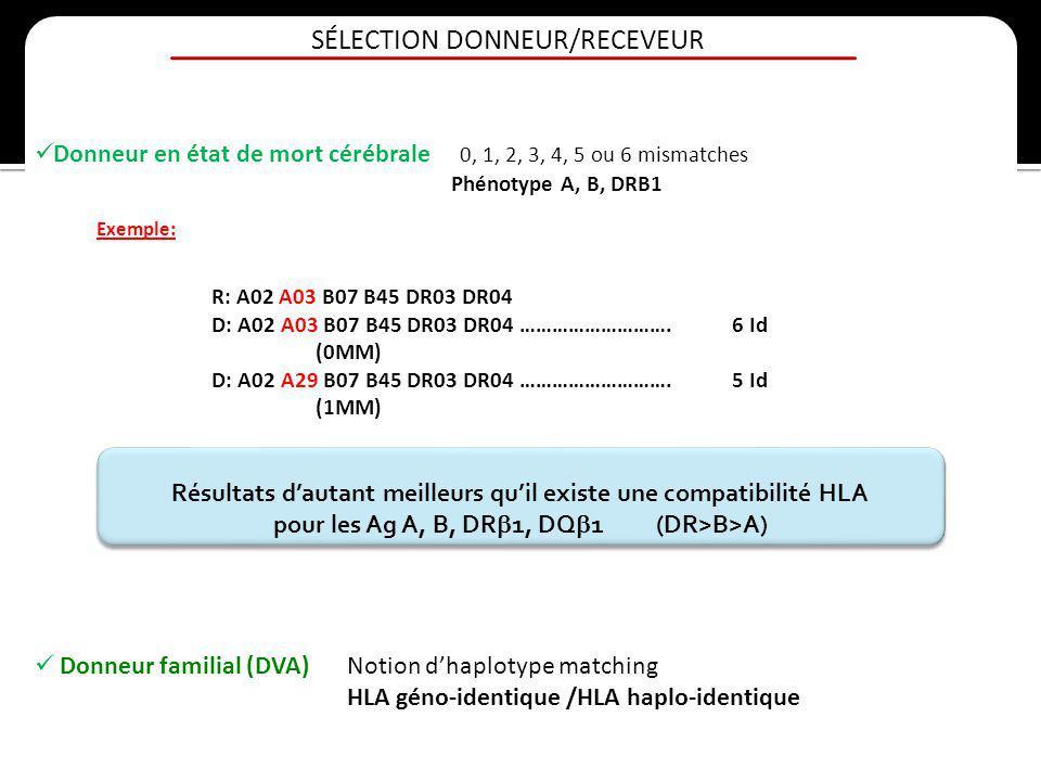 SÉLECTION DONNEUR/RECEVEUR Donneur en état de mort cérébrale 0, 1, 2, 3, 4, 5 ou 6 mismatches Phénotype A, B, DRB1 Résultats dautant meilleurs quil ex