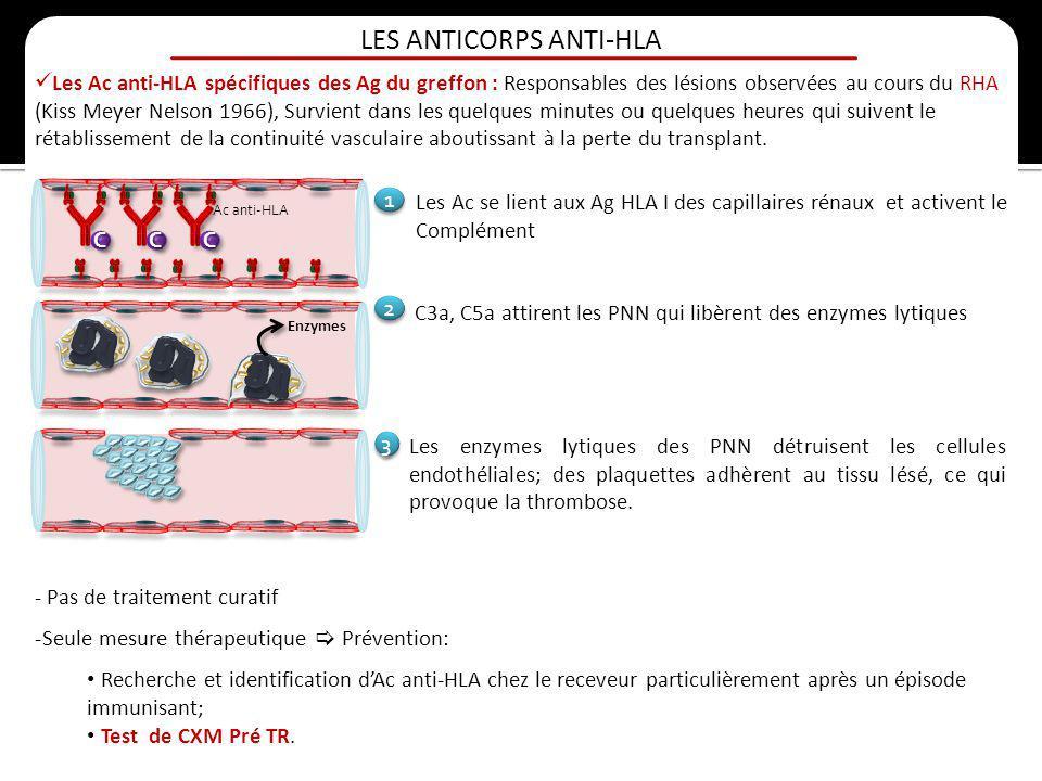 LES ANTICORPS ANTI-HLA Les Ac anti-HLA spécifiques des Ag du greffon : Responsables des lésions observées au cours du RHA (Kiss Meyer Nelson 1966), Su