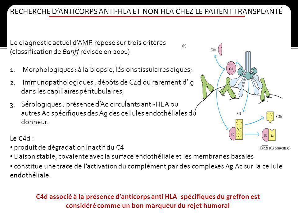 RECHERCHE DANTICORPS ANTI-HLA ET NON HLA CHEZ LE PATIENT TRANSPLANTÉ Le diagnostic actuel dAMR repose sur trois critères (classification de Banff révi