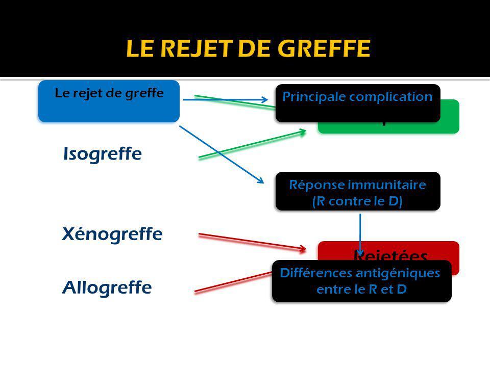 Acceptées Rejetées Isogreffe Xénogreffe Allogreffe Autogreffe Le rejet de greffe Principale complication Réponse immunitaire (R contre le D) Réponse i