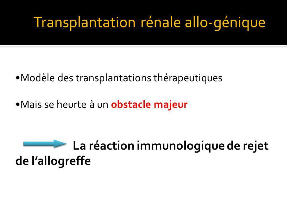 DEVENIR DU TRANSPLANT Résultat dune réponse immune du receveur vis-à-vis dallo-antigènes propres au donneur et exprimés à la surface des cellules du greffon Ces allo-antigènes sont principalement : Antigènes du Complexe Majeur dHistocompatibilité (CMH) = molécules HLA Majeur : Si incompatibilité HLA entre D et R Rapidité du rejet Forte réponse immune mettant en jeu des effecteurs : -Cellulaires : cellules T alloréactives et/ou -Humoraux : production dalloAc Histo : Reconnaissance des molécules du CMH détermine la compatibilité ou lincompatibilité entre les tissus
